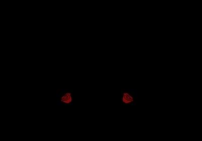 rosgarten_Logo